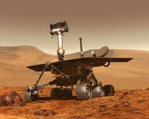 Źródło: http://pl.wikipedia.org/wiki/Plik:Rover1.jpg