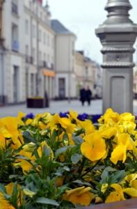 Kielce wiosną